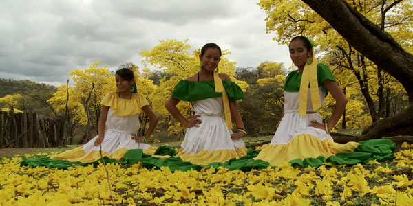 Festival de guayacanes - Ecuador