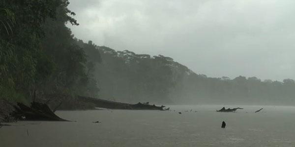 Selva Perú