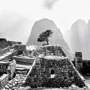 Una pregunta incómoda: ¿Por qué tan pocos peruanos visitan Machu Picchu?
