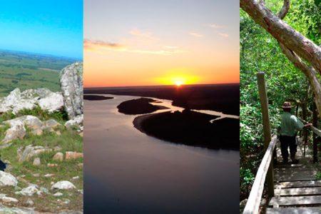 Cinco planes imperdibles para disfrutar la primavera en Uruguay