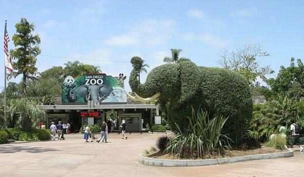 Camina por el Zoológico de San Diego