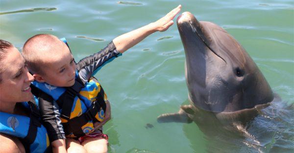 Nadar con delfines en Los Cabos, México.