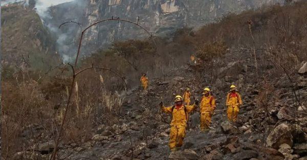 Incendio en el Santuario Histórico de Machu Picchu fue controlado