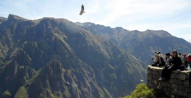 Ingreso gratis al valle del Colca en Arequipa