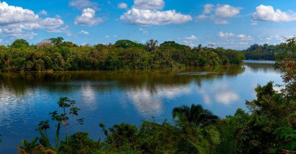 Viaja a la selva de Tambopata