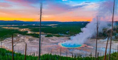 Cinco parques naturales para celebrar la biodiversidad